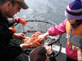 Deep Bay, BC boat tours include prawning, crabbing, sightseeing for the whole family.