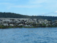 Sightseeing boat tours from Deep Bay, north of Nanaimo, Vancouver Island, BC